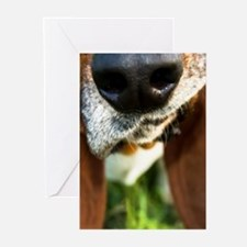 Basset Hound Nose Greeting Cards