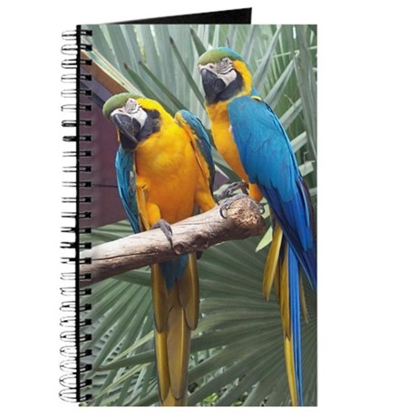 Blue & Gold Macaw Pair ~ Journal