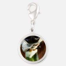 Basset Hound Nose Charms