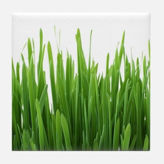 Fresh green grass on white backround- Tile Coaster