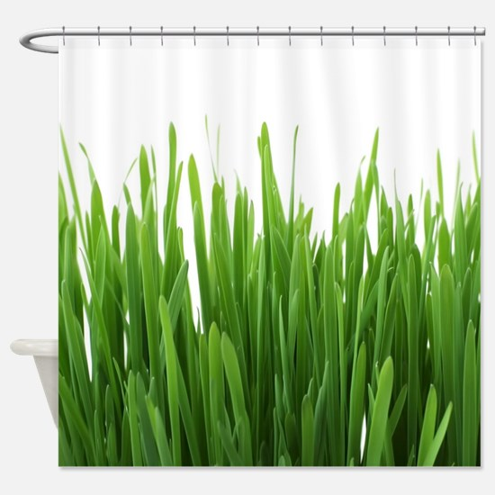 Fresh green grass on white backroun Shower Curtain