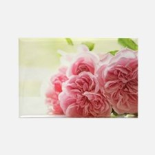 Beautiful shabby roses Magnets