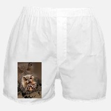 Wonderful owl Boxer Shorts