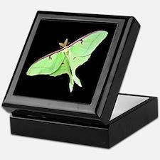Luna Moth Keepsake Box