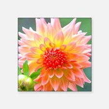 "Cute Garden light Square Sticker 3"" x 3"""