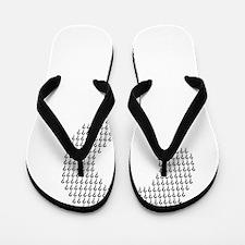 Questioning Flip Flops