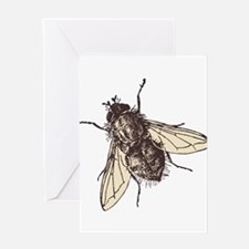 Fatty housefly art Greeting Cards