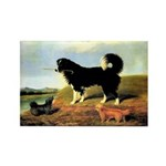 SPANIEL & NORFOLK Rectangle Magnet (100 pack)