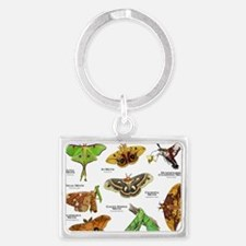 Moths of North America Keychains