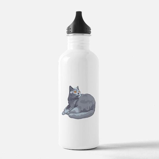 Wild cat sitting Water Bottle