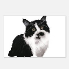 Cute black and white cat Postcards (Package of 8)