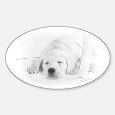 Lab Pup-Nap Oval Decal