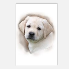 Lab Pup Color Postcards (Package of 8)