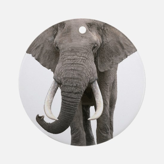 Realistic elephant design Round Ornament