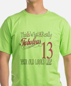 13th Birthday Gifts T-Shirt