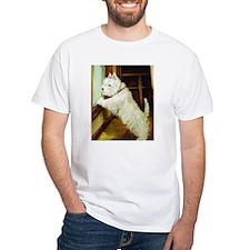 Waiting Westie Shirt