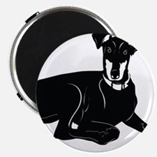 Black American English coonhound Magnets