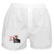 Rudolf the Red Nosed Red Ear Turtle Boxer Shorts