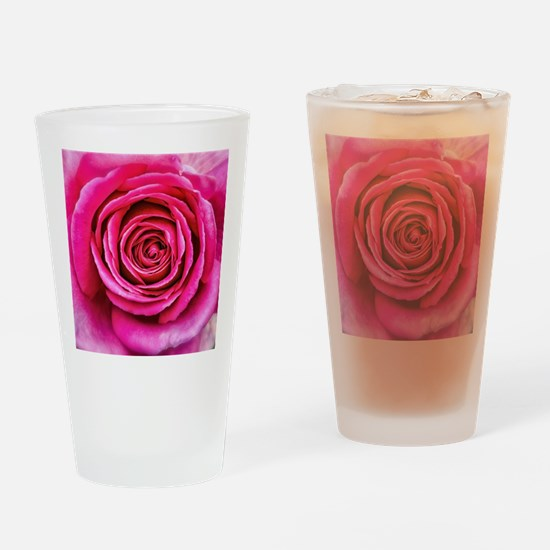 Hot Pink Rose Closeup Drinking Glass