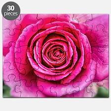 Hot Pink Rose Closeup Puzzle