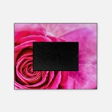 Hot Pink Rose Closeup Picture Frame