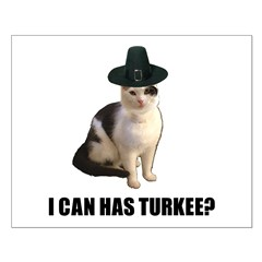 Can has turkee Posters