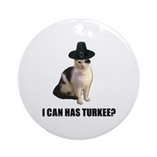 Can has turkee Ornament (Round)