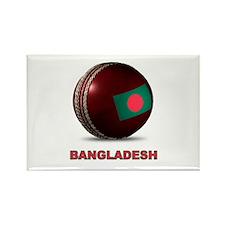 Cricket ball Magnets