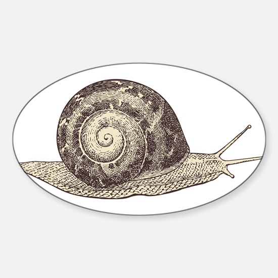 Hand painted animal snail Decal