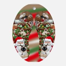 Ragdoll Cats Enjoying Christmas Oval Ornament