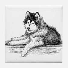 Hand drawn huskies dog Tile Coaster