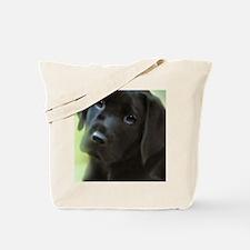 Cool Black labs Tote Bag