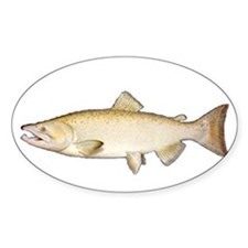 Chinook Salmon Oval Decal