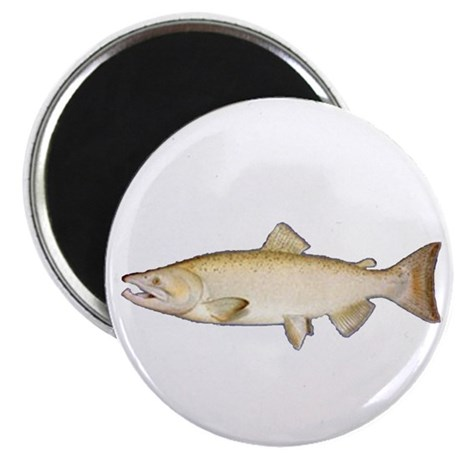 """Chinook Salmon 2.25"""" Magnet (10 pack)"""