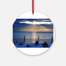 Florida Pelican Round Ornament