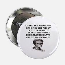 "Living in Amerikkka 2.25"" Button"