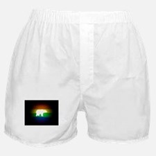 rainbow gay bear art Boxer Shorts