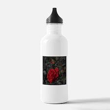 red rose in dark mourn Water Bottle