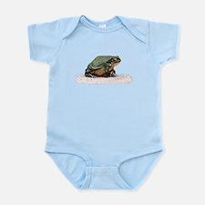 Colorado River Toad - Incilius alvarius Body Suit