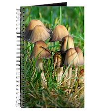 Mushrooms #1 Journal
