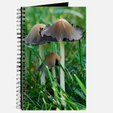 Mushrooms #2 Journal