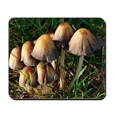 Mushrooms #4 Mousepad
