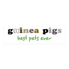 Guinea Pigs-Best Pets Wall Decal