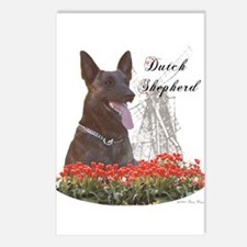 Dutchie-tulips Postcards (Package of 8)