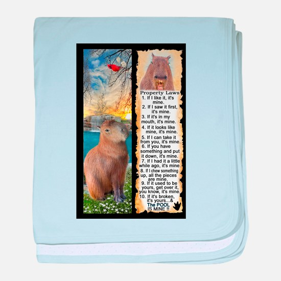 Capybara FUN Property Laws & Rules baby blanket