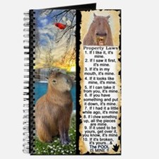 Capybara FUN Property Laws & Rules Journal