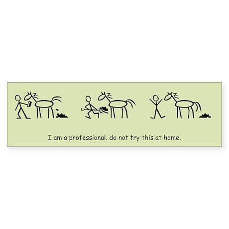 I am a Professional: Groom / Bumper Sticker