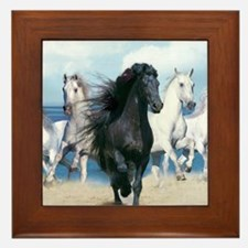 Cute Wild horses Framed Tile