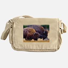 American Bison Family Messenger Bag