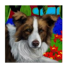 BORDER COLLIE DOG red & white Tile Coaster